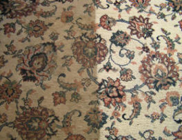 rsz_upholstery_cleaning_calgary264x203